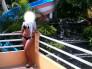 Mi prima, la piscina, su bra y su tanga.